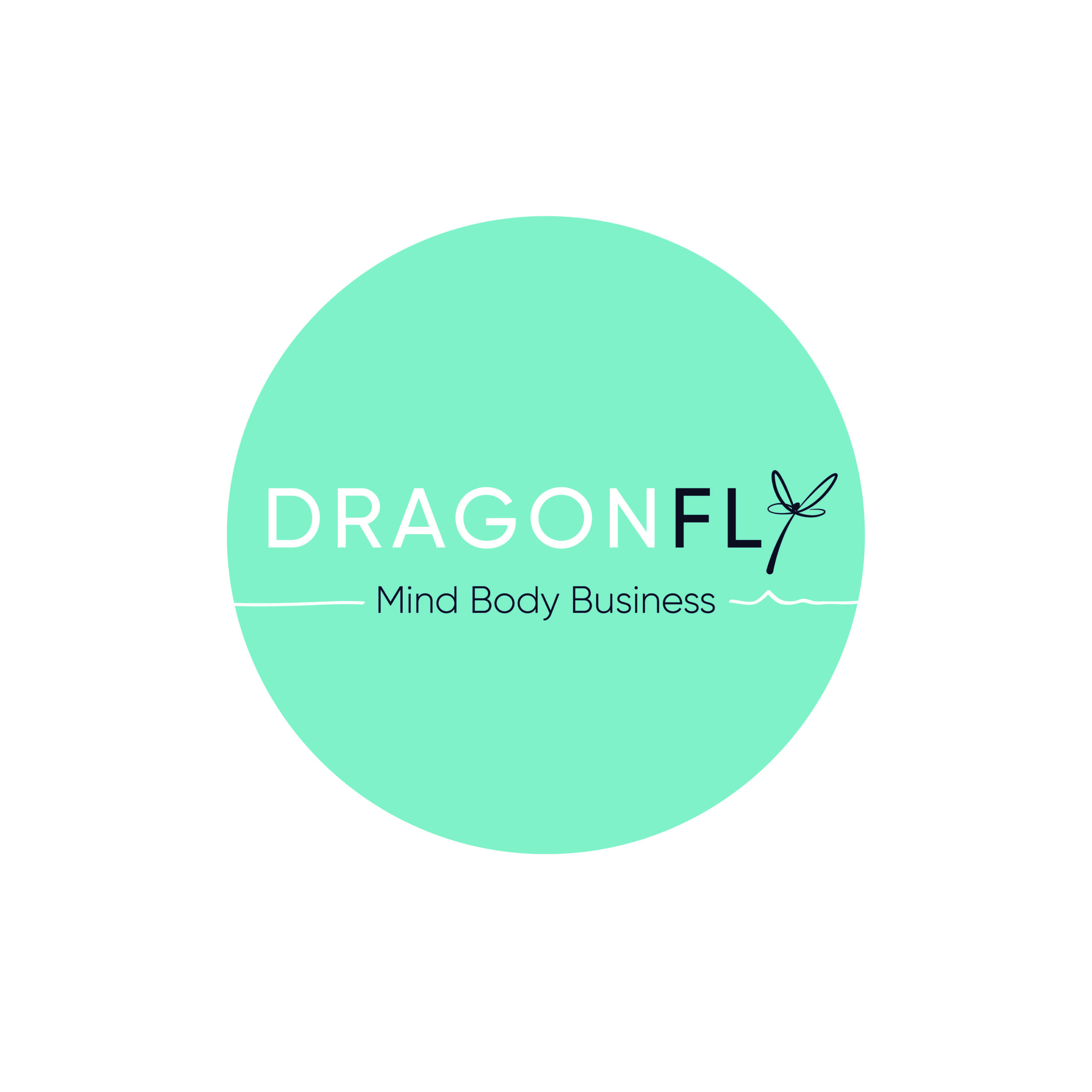 Dragonfly Coaching and Consultancy - Performance